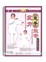 DW028 - Applying Force、free Sparring of Yi Quan 意拳发力﹑散手