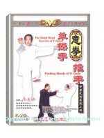 DW029 - The single Turning Palm Of the Liang Style Eight Diagrams Palm 梁式八卦掌单式转掌