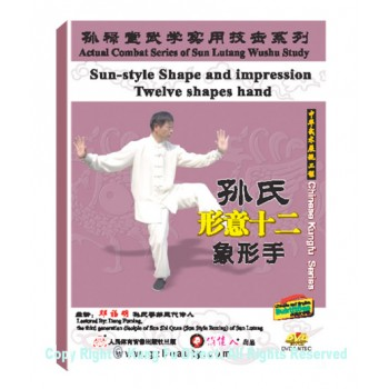 DW134-16 - Sun Shi Xingyi Twelve Pictographic hands