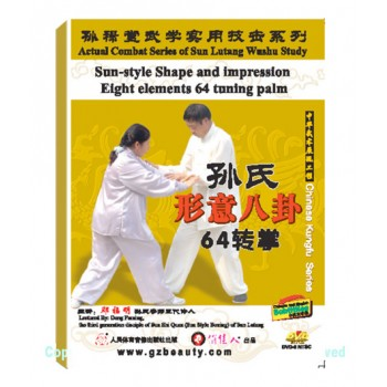 DW134-19 - Sun Shi Xingyi Bagua the 64-method tuning palm