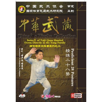 DW174-02 - Yang-style Taiji Quan 28 Postures of Quintessence