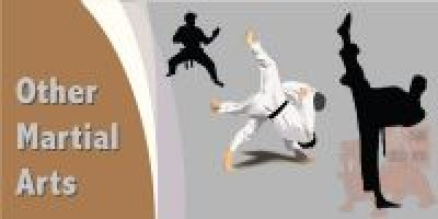 Martial Arts Designs (4)