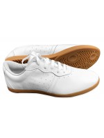 FT004 -1 - NEW TeamUp Leather Tai Chi Shoes - White