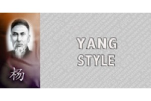 All Yang Style (6)