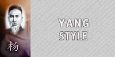 All Yang Style