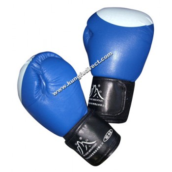 Professional Boxing Gloves Blue