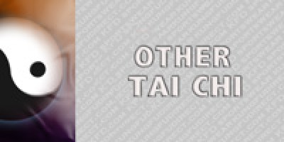 Other Tai Chi Styles